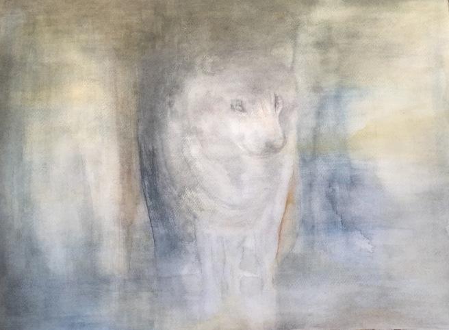 Ensamvarg 72x52 cm Akvarell